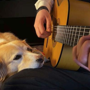 Man plays Space Oddity to dog in tribute Trench an